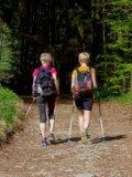 Przypominamy o organizowanym Chodzie Nordic Walkin