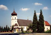 Widok na kościół oraz tuje przed kościołem